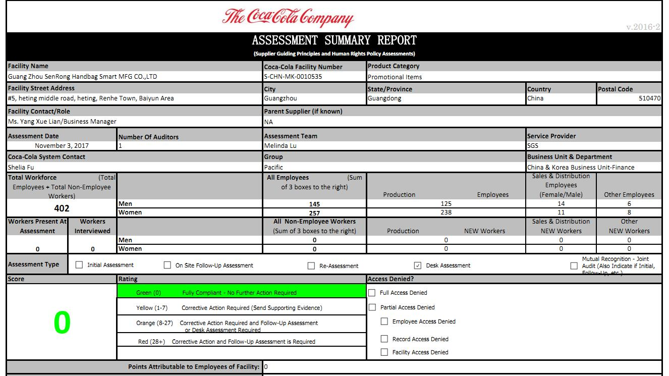 coca cola assessment report